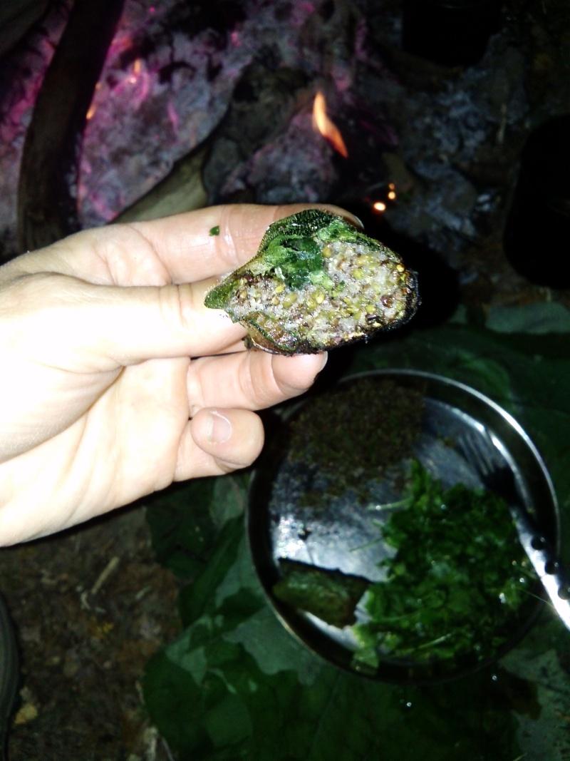 [recette] un repas sauvage ( plantain, pulmonaire, ortie...) Cam02613