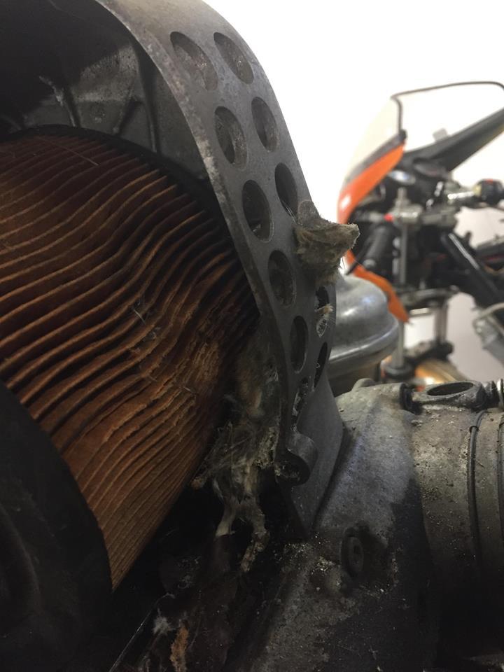 boitier de filtre à air R100 77 --> 80 Souris11