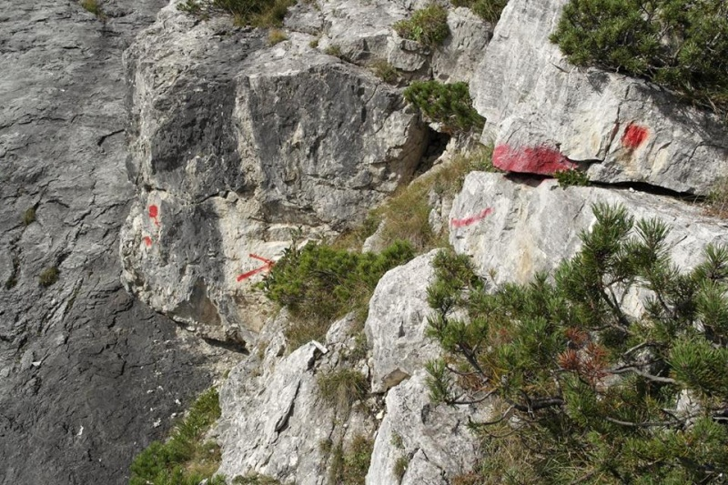 Ultime dalle Ciazze Alte... (segnalazioni abusive/Dolomiti d'Oltrepiave) 12036911