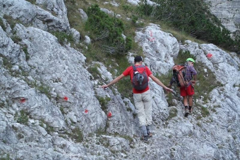 Ultime dalle Ciazze Alte... (segnalazioni abusive/Dolomiti d'Oltrepiave) 12039410