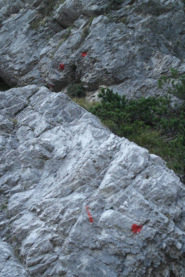 Ultime dalle Ciazze Alte... (segnalazioni abusive/Dolomiti d'Oltrepiave) 12039411