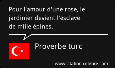 citation celebre Citati54