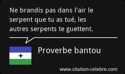 citation celebre Citati55