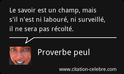 citation celebre Citati56
