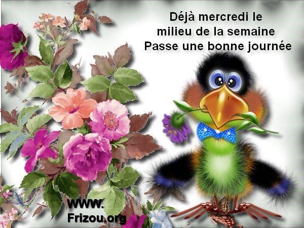 citation image Deja_m11
