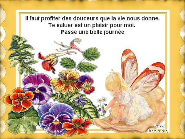 citation image Il_fau13