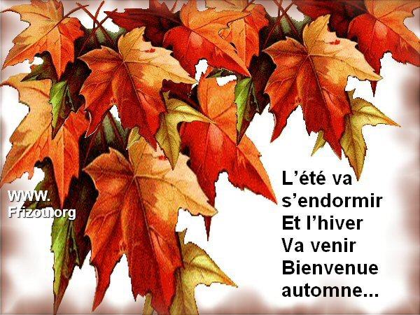 citation image L_yty_10