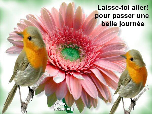 citation image Laisse10