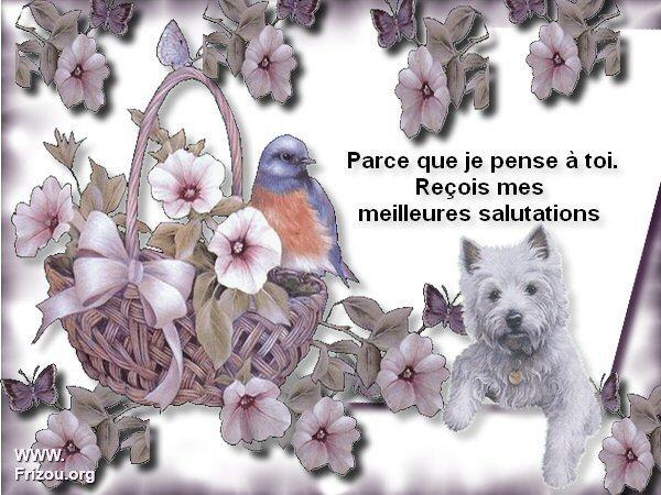 citation image Parce_13