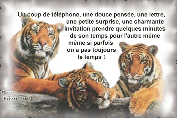 citation image Pensee13