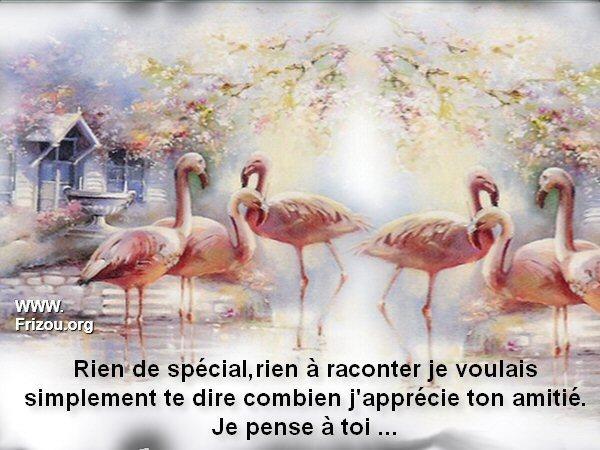 citation image Rien_d11