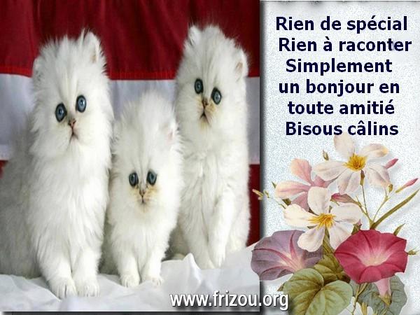 citation image Rien_d12