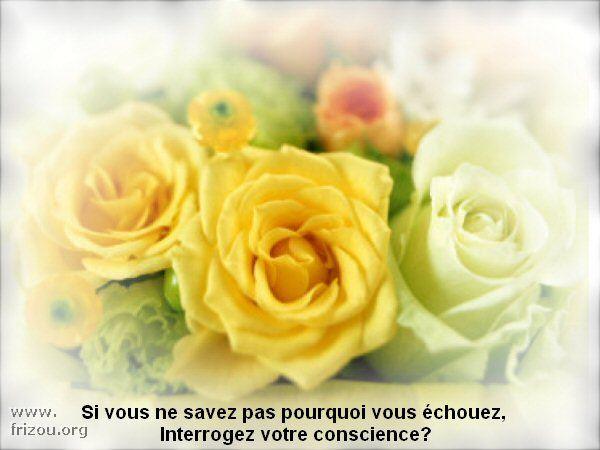 citation image Si_vou10