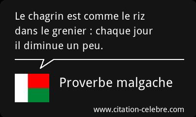 citation celebre Citati14