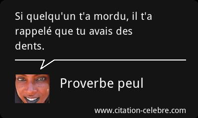 citation celebre Citati87