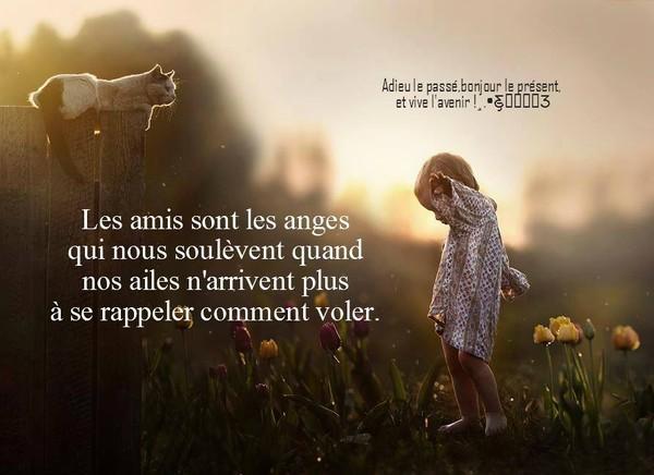 citation image Les_am10