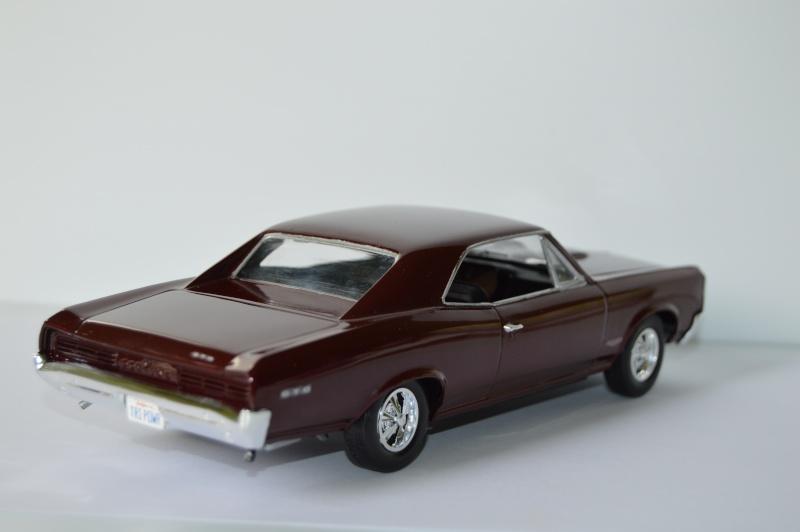 Pontiac GTO 66' - Page 2 Dsc_0512