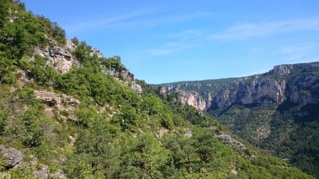 Gorges du Tarn Août 2015 Dsc_0010