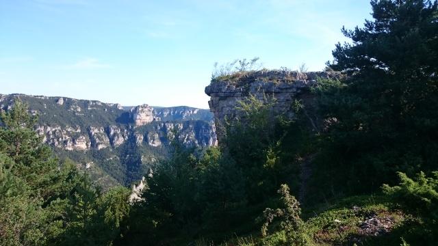 Gorges du Tarn Août 2015 Dsc_0021