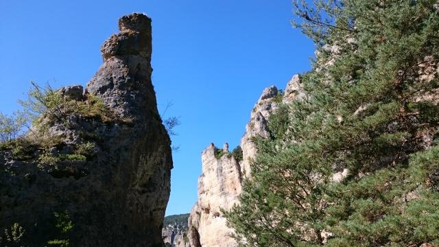 Gorges du Tarn Août 2015 Dsc_0223