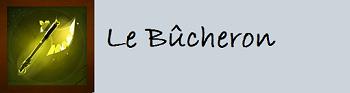 Récapitulatif des métiers de la guilde Bucher11