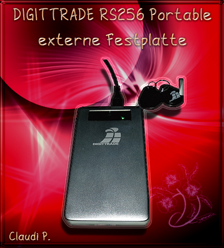 Diggittrade Security Festplatte RS256 Festpl10