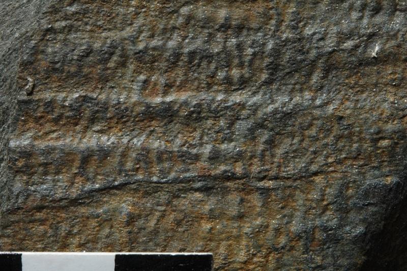 Flore Carbonifère des Alpes Françaises part 1 - Page 2 Sech_012