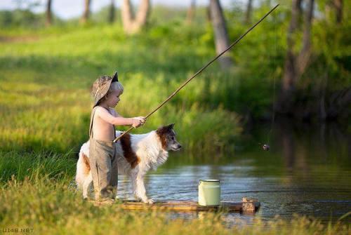 Les chiens Baby Sitters.. Magnifique... 0210