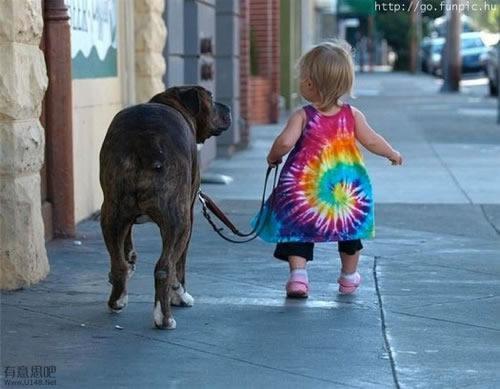 Les chiens Baby Sitters.. Magnifique... 0310