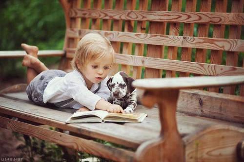 Les chiens Baby Sitters.. Magnifique... 1512