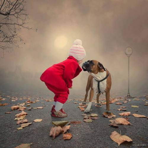 Les chiens Baby Sitters.. Magnifique... 1812