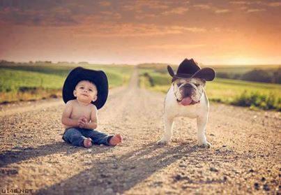 Les chiens Baby Sitters.. Magnifique... 1912