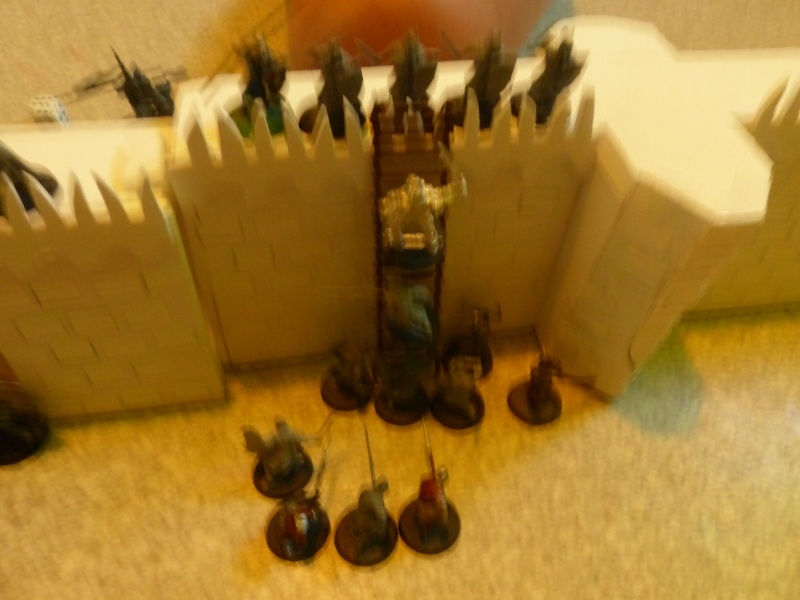 Elendil contre Sauron - Page 3 P1060810