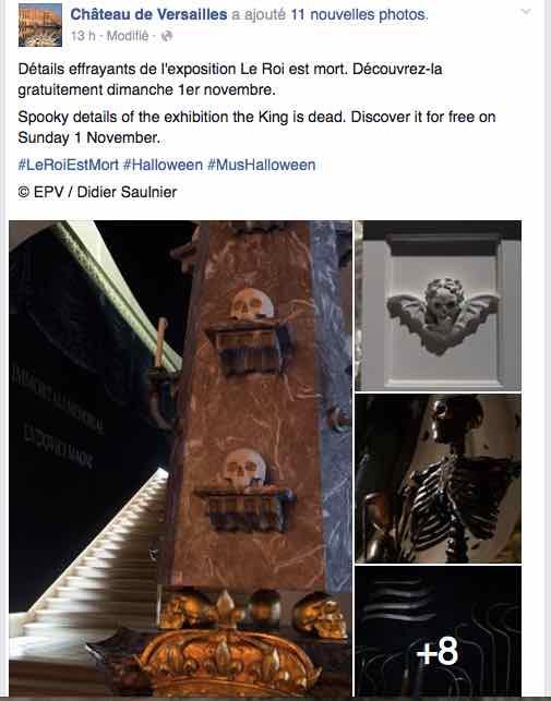 Exposition : Le roi est mort ! 26/10 2015 - 21/02 2016 - Page 3 Expo210