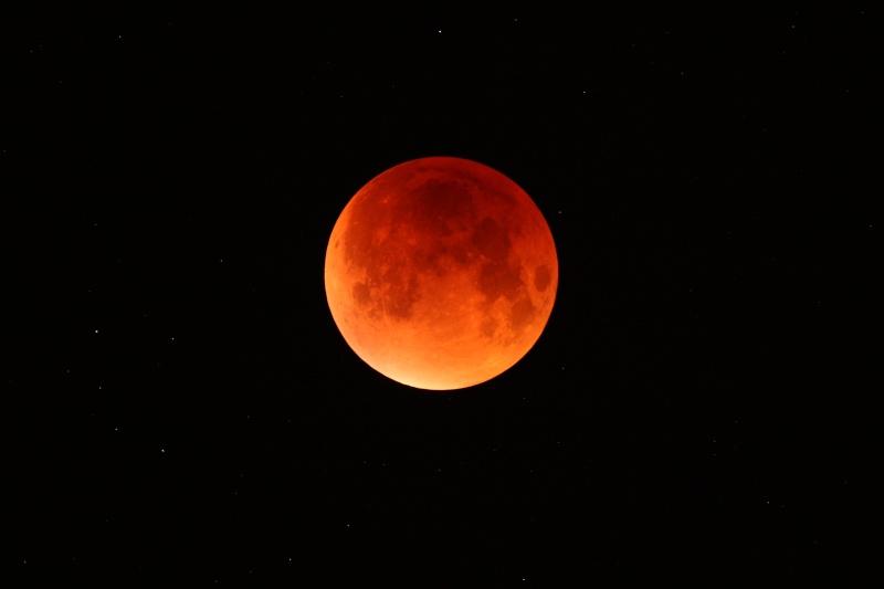 Ma participation à l'éclipse Img_4510