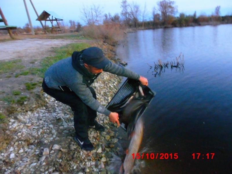 история Черноморца Dsci6424