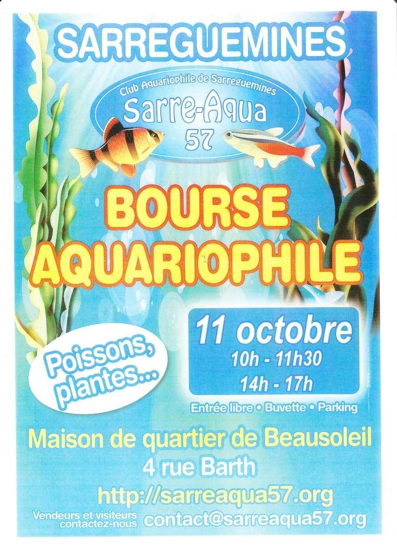 Bourse SARRAQUA (57) - 11 octobre 2015 Bourse10