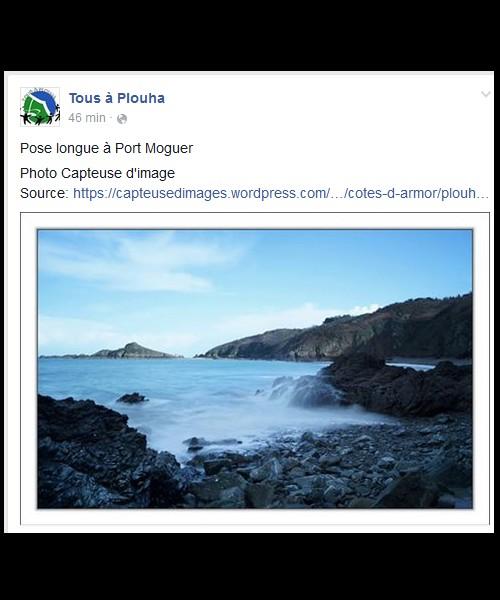 Photo Capteuse d'image  / BRETAGNE  318