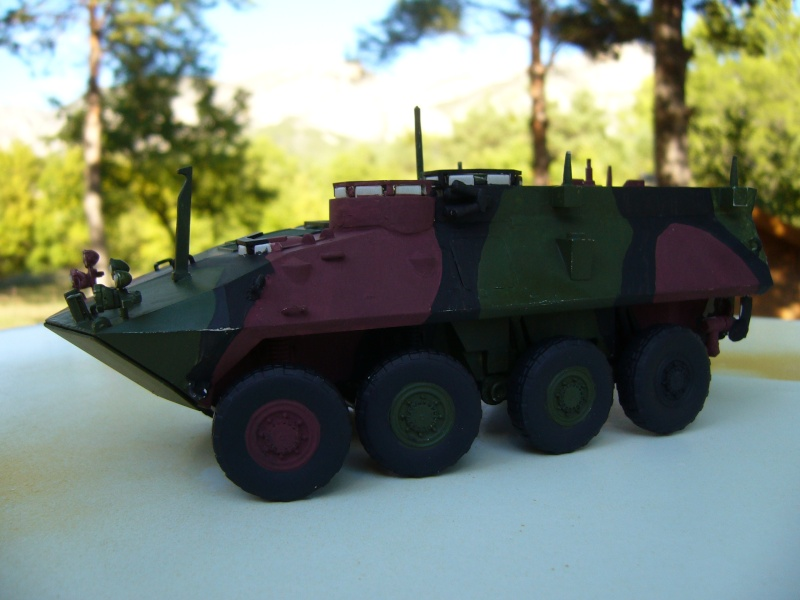 LAV 25 version command vehicle - ESCI - 1/35 from the box - Page 3 P1030115