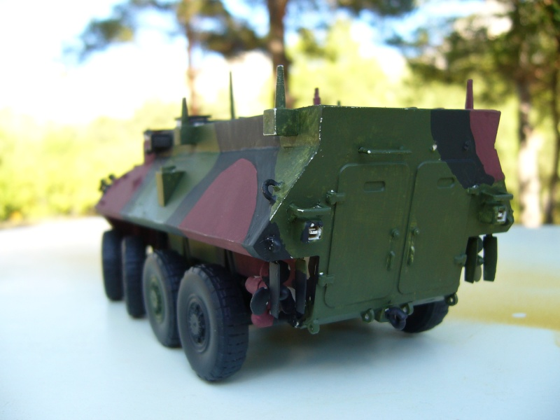 LAV 25 version command vehicle - ESCI - 1/35 from the box - Page 3 P1030116