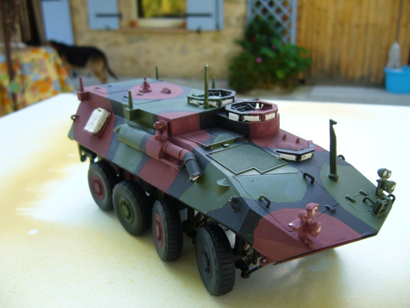 LAV 25 version command vehicle - ESCI - 1/35 from the box - Page 3 P1030118