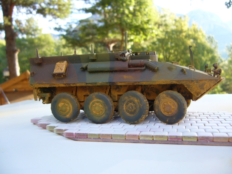 LAV 25 version command vehicle - ESCI - 1/35 from the box - Page 4 P1030216