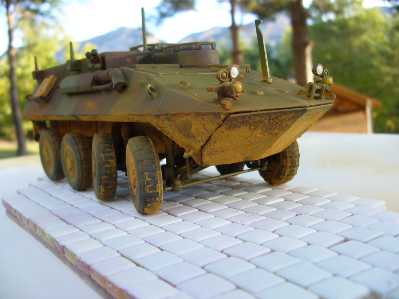LAV 25 version command vehicle - ESCI - 1/35 from the box - Page 4 P1030217