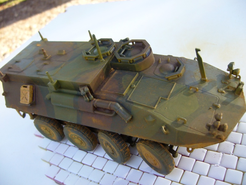 LAV 25 version command vehicle - ESCI - 1/35 from the box - Page 4 P1030218