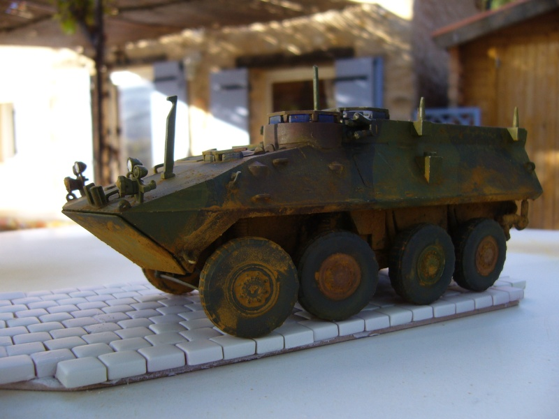LAV 25 version command vehicle - ESCI - 1/35 from the box - Page 4 P1030220