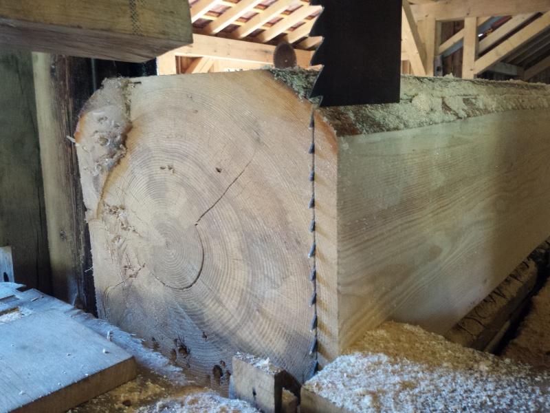 Une scierie qui renait de ses cendres 20150924