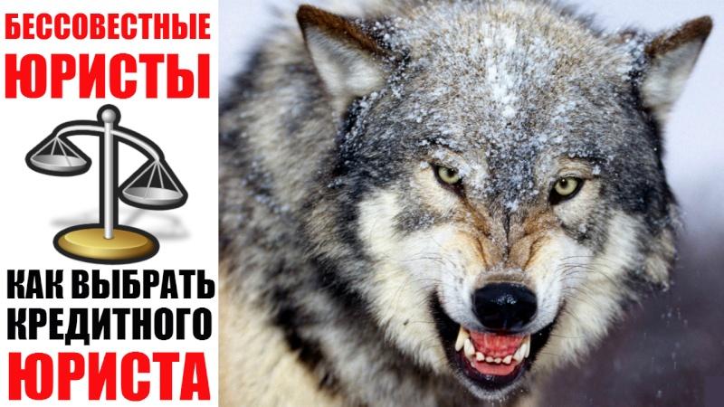 Антикредитный блог _aeia_10