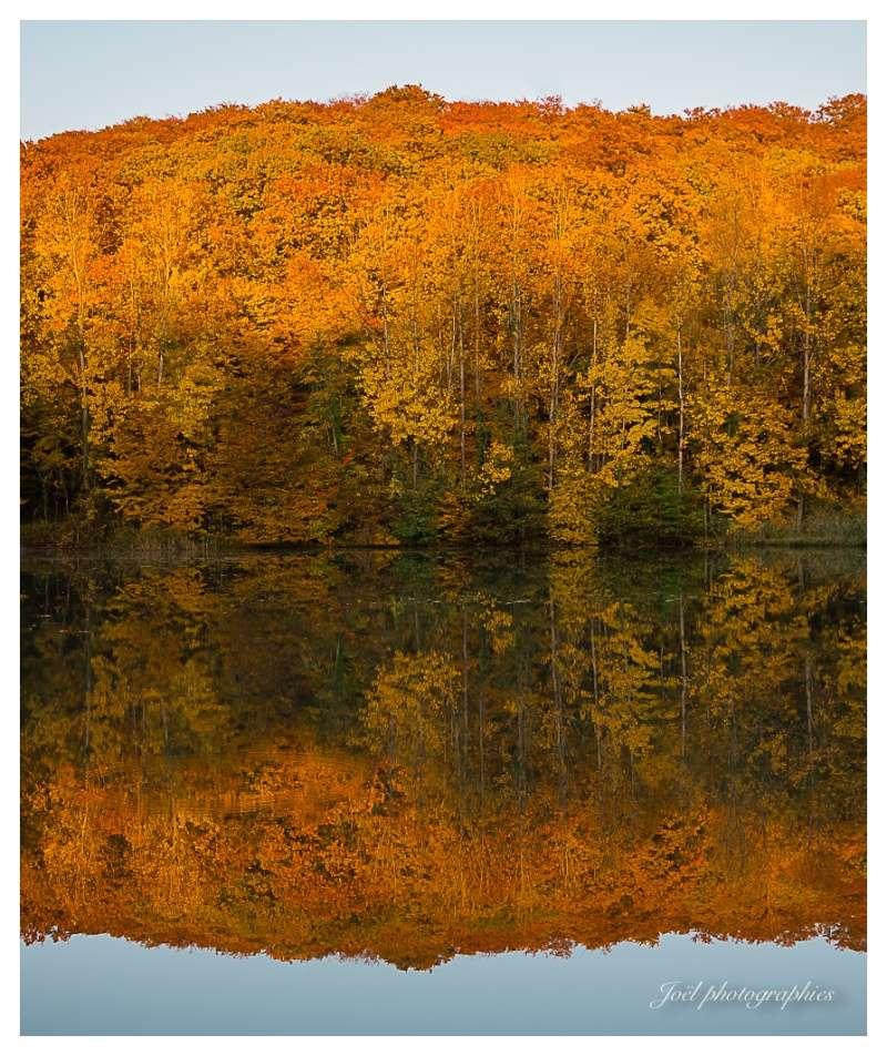 Reflet d'automne _dsc9812