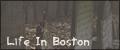 Life In Boston Bouton10