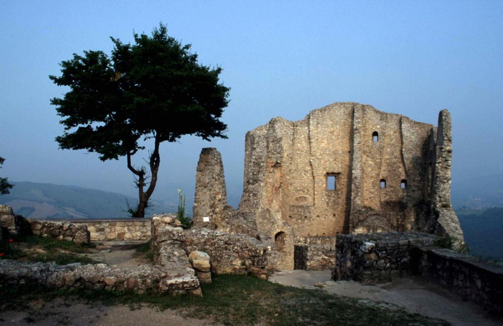 ALLE ORIGINI DEI CASTELLI (Tortona, 22 settembre 2018) Castel11